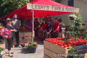 Apsley and North Kawartha residents now have access to fresh produce at the new Leahy's Farm & Market - kawarthaNOW.com