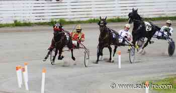 Colin Johnson has career moment Saturday at Charlottetown Driving Park   Saltwire - SaltWire Network