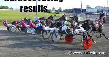 Ladylike scorches Atlantic mares record at Charlottetown Driving Park   Saltwire - SaltWire Network