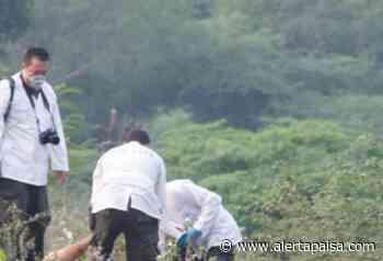 Asesinan a balazos a pareja de hermanos en Fredonia, Antioquia - Alerta Paisa