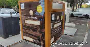 Marseillan - Installation de conteneurs à carton : Objectif Marseillan Zéro Déchet - HERAULT direct