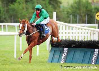 LISTOWEL SUNDAY: My Sister Sarah to see out trip - The Irish Field