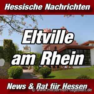 Eltville am Rhein - Mediathek ist wieder wieder geöffnet - Mittelrhein Tageblatt