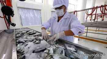 Chiclayo: impulsarán construcción de desembarcadero pesquero artesanal en Puerto Eten - LaRepública.pe
