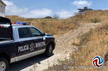 Localizan cadáver en Hacienda de las Lomas - AGENCIA FRONTERIZA DE NOTICIAS