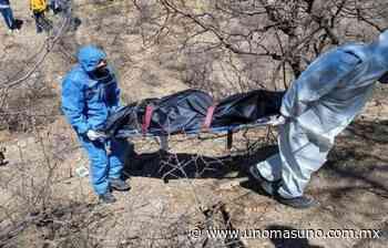 Encuentran 5 cuerpos en fosas clandestinas en Nogales, Sonora – unomásuno.com.mx - UnomásUno