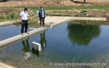 Sullana: Autoridad Nacional del Agua monitorea semanalmente caudales en la Presa Poechos - El Regional