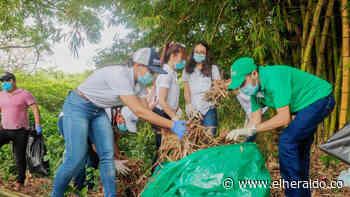 Jornada de limpieza en Sucre en Día Mundial del Medio Ambiente - EL HERALDO