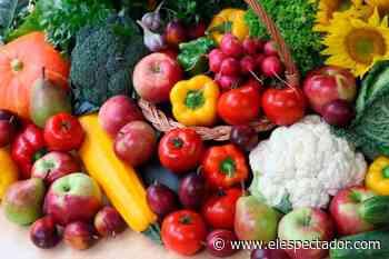En Jenesano (Boyacá) promueven trueques entre productos reciclables y frutas - Cromos