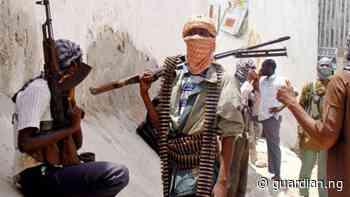 Gunmen kill six, injure three in Katsina — Nigeria — The Guardian Nigeria News – Nigeria and World News - Guardian