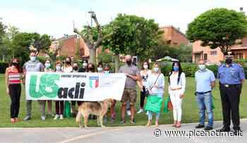 Unione Sportiva Acli: Altidona, ancora posti disponibili per corso gratuito di autodifesa - picenotime