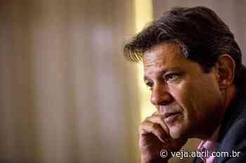 De olho no Palácio dos Bandeirantes, Haddad se movimenta em SP - VEJA.com