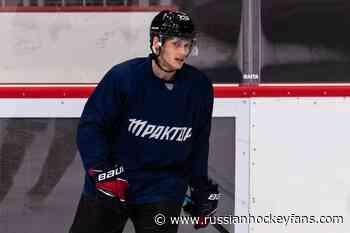 KHL » Video: Salavat's Goalie Vitaly Kolesnik Assaulted By A Fan During A Game - Russian Hockey Fans