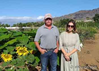 Abierta una nueva convocatoria para adjudicar 41 huertos municipales en Los Llanos - elapuron.com