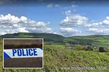 Handbag stolen from vehicle parked in Langdon Woods | Bridport and Lyme Regis News - Bridport and Lyme Regis News