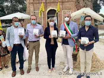 Legnago, inaugurata ieri la 2^ Festa del Grano - Daily Verona Network - Daily Verona Network