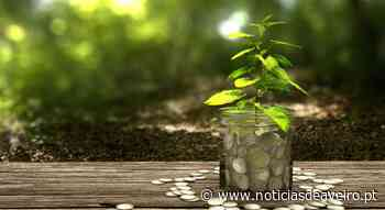 Dia Mundial do Ambiente: Lembranças em prol da sustentabilidade - Notícias de Aveiro