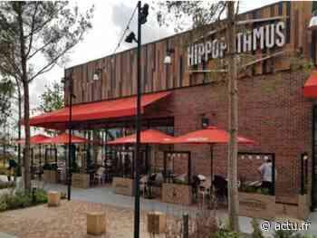 Restauration : un steakhouse Hippopotamus ouvre à Claye-Souilly - La Marne
