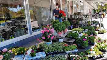 Corona steigert die Gartenlust – In Blumberg starten viele ...   SÜDKURIER Online - SÜDKURIER Online