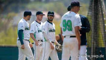 Baseball: Falcons Ulm mit Spannung bis zum Schluss - SWP