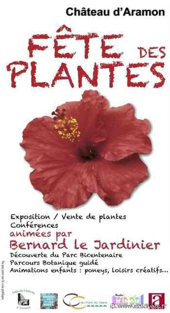 Fête des plantes Parc du château - Unidivers