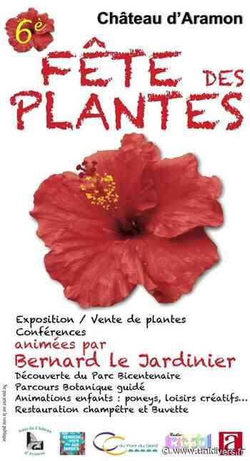 6ème Fête des Plantes du Château d'Aramon - Unidivers