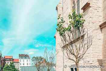 """Erfgoedtuin Sint-Servaaskerk is gerestaureerd: """"Het wordt een toplocatie"""""""