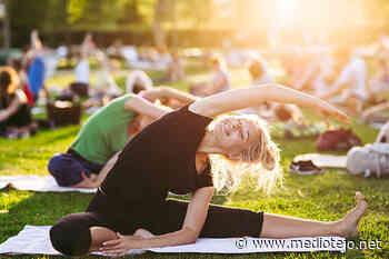 Entroncamento   Aulas de Yoga gratuitas e ao ar livre de junho a setembro - mediotejo.net