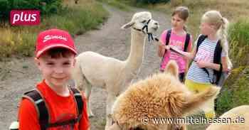 Gladenbach Gladenbach will Kindern Ferienspaß bieten - Mittelhessen