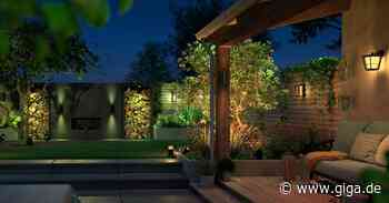 Gartentrends 2021: Gadgets, mit denen ihr eure Nachbarn neidisch macht - Giga