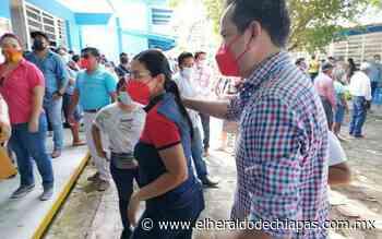 Candidatos a la presidencia municipal de Palenque emiten su voto - El Heraldo de Chiapas