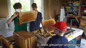 Mit Krebsen und Bienen vertraut - Gießener Allgemeine