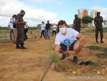 Petrolina e Juazeiro comemoram Dia Mundial do Meio Ambiente com plantio de mudas e homenagens - Folha de Pernambuco