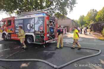 Haag vliegt in brand in Eksel - Het Belang van Limburg