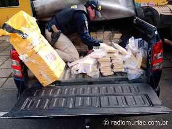 PRF de Leopoldina apreende cerca de meia tonelada de pasta base de cocaína durante operação na BR-116 - Rádio Muriaé