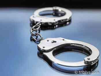 North Huntingdon police say man sold informant 5 bricks of heroin in drug sting - TribLIVE