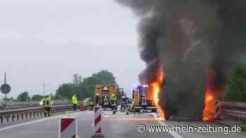 Brennende Olivenbäume stoppen Verkehr auf A61 – Autobahn Richtung Koblenz stundenlang gesperrt - Rhein-Zeitung