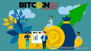 Bitcoin SV Surpasses Bitcoin Scaling! Is BSV the Next Big Thing? - NameCoinNews