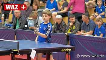 Essen: Tischtennis-Spieler des KSV kurz vor dem Saisonstart - WAZ News