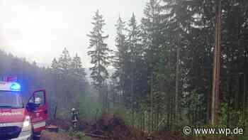 Nach Blitzschlag: Baum bei Schmallenberg steht in Flammen - WP News