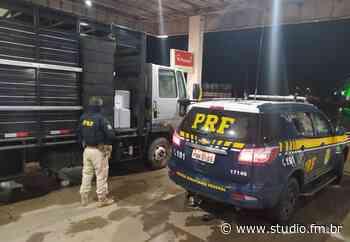 Com caminhão carregado de agrotóxicos contrabandeados, casal é preso pela PRF no RS - Rádio Studio 87.7 FM | Studio TV | Veranópolis