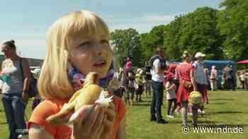 Sieben-Tage-Inzidenz unter 1: Sassnitz feiert Kinderfest - NDR.de