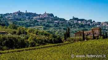 """I vigneti di Montepulciano riconosciuti come """"Paesaggio rurale storico"""" - Federvini - Federvini"""