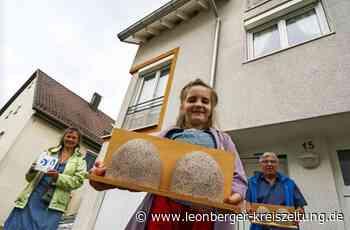 Auszeichnung für Rutesheimer Familie: Ein gutes Zuhause für Schwalben - Leonberger Kreiszeitung