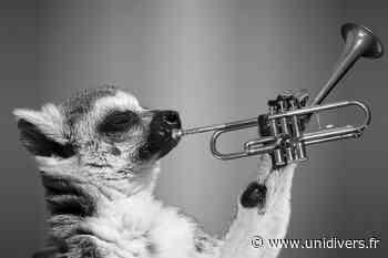 Duo Saxophone Trombone Marché de Vern-sur-Seiche - Unidivers