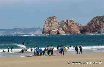 Hendaye : l'été s'annonce chaud pour les écoles de surf - Sud Ouest
