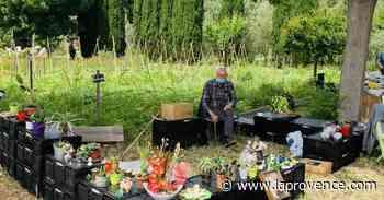 Sorties - Loisirs | La Ciotat : cultiver au jardin solidaire - La Provence