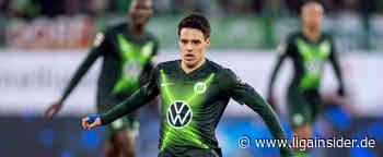 VfL Wolfsburg: Brekalo meldet sich beim kroatischen Nationalteam fit - LigaInsider