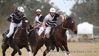 Albury reigns supreme at Wagga polocrosse carnival | Photos - The Daily Advertiser