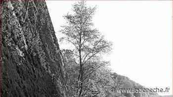 Saint-Girons. La série photo B.E.R.G.E.S à voir à la médiathèque - LaDepeche.fr